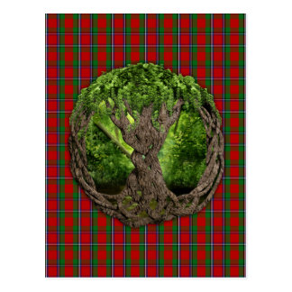 Celtic Tree Of Life And Clan Sinclair Tartan Postcard