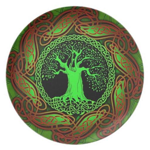 Celtic Wisdom Tree Platos