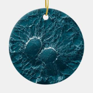Células bacterianas del cierre del estafilococo adorno navideño redondo de cerámica
