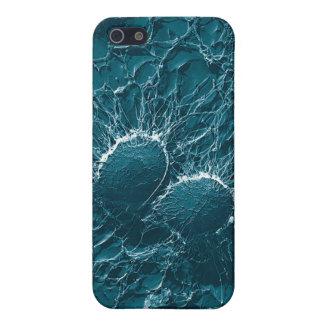 Células bacterianas del cierre del estafilococo áu iPhone 5 carcasas