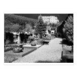Cementerio alemán con el gato negro que camina a t postales