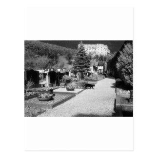Cementerio alemán con el gato negro que camina a postal
