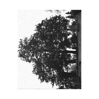 Cementerio B&W Impresión En Lienzo Estirada