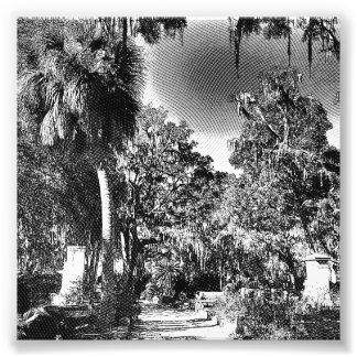 Cementerio colonial arte fotografico