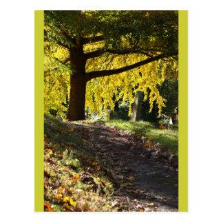 Cementerio de Bosque verde, Brooklyn, NY Tarjetas Postales