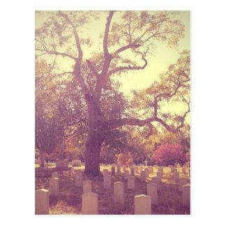Cementerio de la luz suave postales