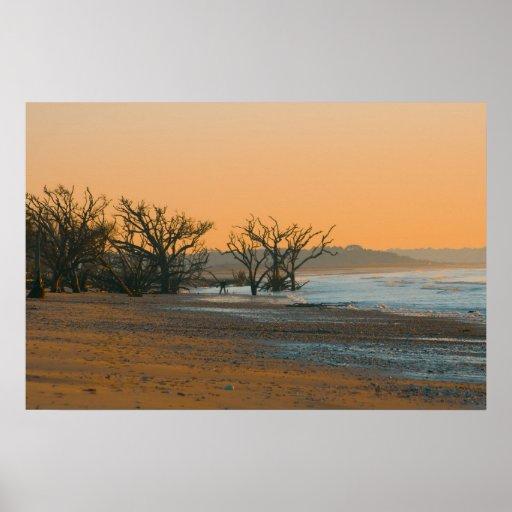 Cementerio del árbol en la playa póster