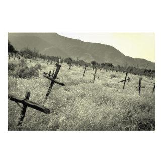 Cementerio del viñedo impresión fotográfica