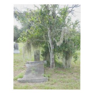 Cementerio el condado de Desoto FL de la colina Cuadro