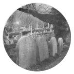 cementerio reservado plato para fiesta