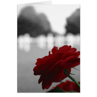 Cementerio y rosa rojo - Memorial Day Tarjeta De Felicitación