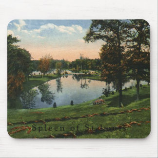 Cemetary Lakeside mouse pad