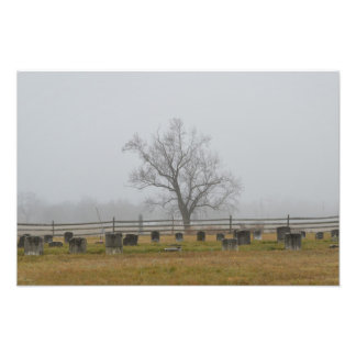Cemetery fog photo print