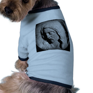Cemetery Statue of Christ Dog Clothes
