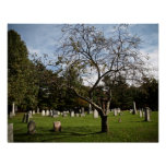 Cemetery Tree Posters