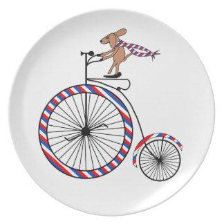 Cena de la bici del perro/placa pasadas de moda plato de comida