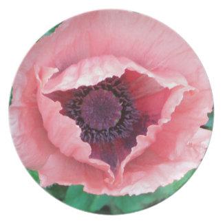 Cena rosada de la amapola oriental placa decorativ plato