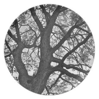 """Cenando la placa, 10"""" diámetro, diseño del árbol plato para fiesta"""