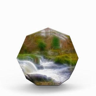 Cenarth Falls Acrylic Award