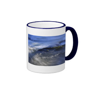 Cenarth Falls Mug