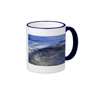 Cenarth Falls Ringer Mug