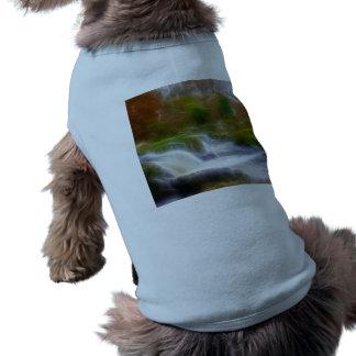 Cenarth Falls T-Shirt