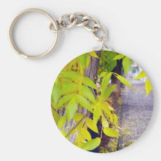 Ceniza con las hojas del amarillo y las tejas del llavero redondo tipo pin
