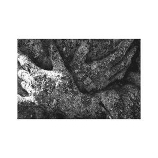 Ceniza e impresión estirada sombras de la lona impresiones en lona estiradas