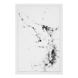 Censo Dotmap del mar de Salish Póster