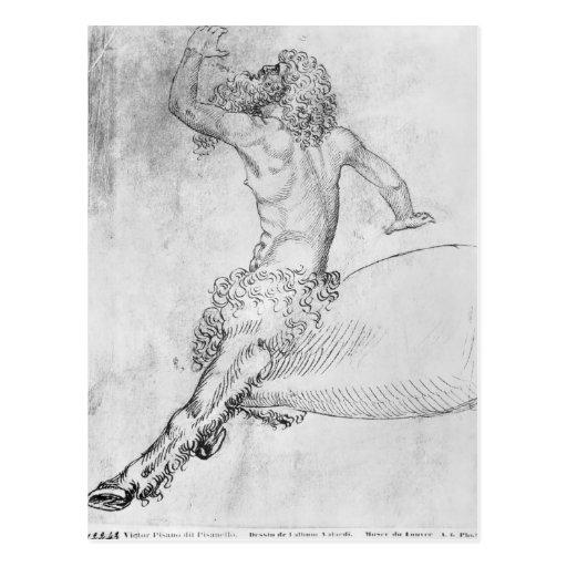 Centaur, from the The Vallardi Album Post Cards