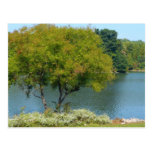 Centennial Lake in Ellicott City Maryland Postcard