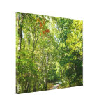 Centennial Wooded Path I Ellicott City Nature Canvas Print