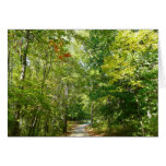 Centennial Wooded Path I Ellicott City Nature Card
