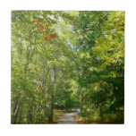 Centennial Wooded Path I Ellicott City Nature Ceramic Tile