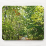 Centennial Wooded Path I Ellicott City Nature Mouse Pad