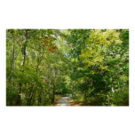 Centennial Wooded Path I Ellicott City Nature Poster