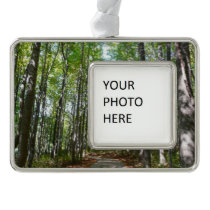 Centennial Wooded Path II Christmas Ornament
