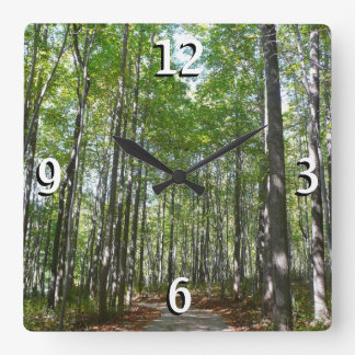 Centennial Wooded Path II Columbia Maryland Photo Square Wall Clock