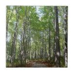 Centennial Wooded Path II Ellicott City Maryland Ceramic Tile