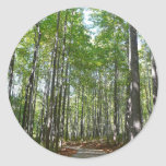 Centennial Wooded Path II Ellicott City Maryland Classic Round Sticker