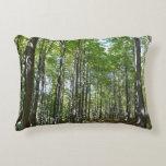 Centennial Wooded Path II Ellicott City Maryland Decorative Pillow