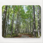 Centennial Wooded Path II Ellicott City Maryland Mouse Pad