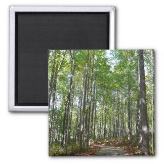Centennial Wooded Path II Magnet