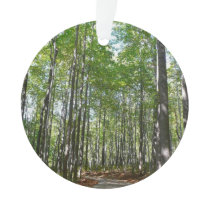 Centennial Wooded Path II Ornament