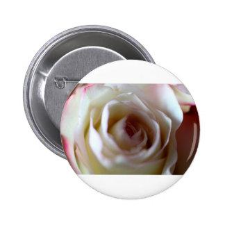 Center Folds Button