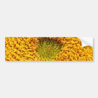 Center of a sun flower bumper sticker