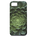 Center of Cactus iPhone 5 Covers