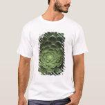 Center of Cactus T-Shirt