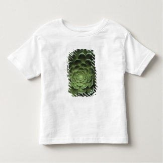 Center of Cactus Toddler T-shirt