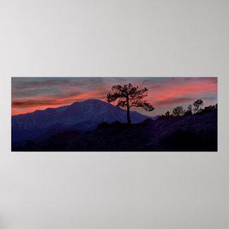 Centinela de la puesta del sol póster